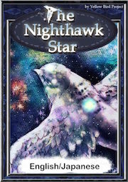The Nighthawk Star